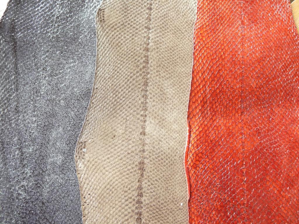 La gamme Banka haute en couleurs